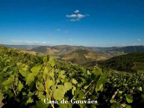 Casa de Gouvães - Turismo no Espaço Rural no Douro