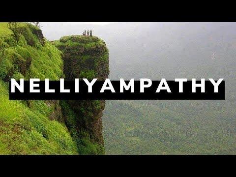 നെല്ലിയാമ്പതിയിൽ കാണേണ്ട സ്ഥലങ്ങൾ  | Nelliyampathy  Kerala tourism
