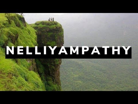 Top destinations in nelliyampathy palakkad_tour attractions