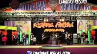 Download Lagu Wujute Roso Nella Mp3 Video Gratis