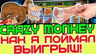 Игровой Автомат Crazy Monkey поставил Львов! Схема Казино! Выигрыш в Игровые Автоматы!
