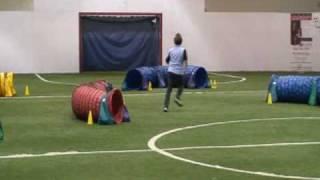 Tori - Sat Tunnel Maze @ Midwest Dog Agility Championships