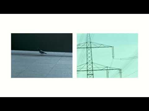 Das Paradies - Hier Bist Du Sicher (offizielles Video)