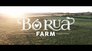 A Day At Bó Rua Farm
