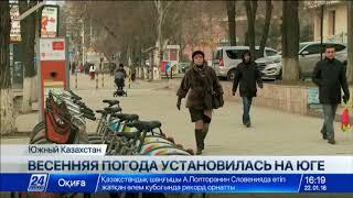 Весенняя погода установилась на юге Казахстана