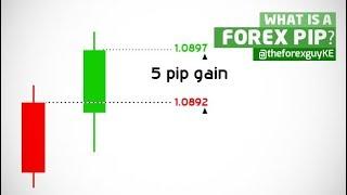 Entenda! o que é PIP no mercado de Forex.