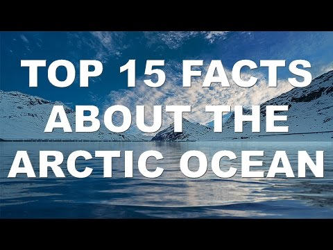 TOP 15 Facts About The Arctic Ocean