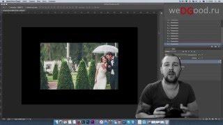Как фотографировать - фотошкола №1 - резкость(Если у вас фотоаппарат Никон то нужно ставить режим AF-S Пример моих фото можно посмотреть тут: http://wedgood.ru..., 2015-12-11T01:01:02.000Z)