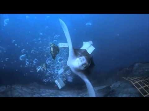 Sammy's Adventures - Official Trailer (2011)