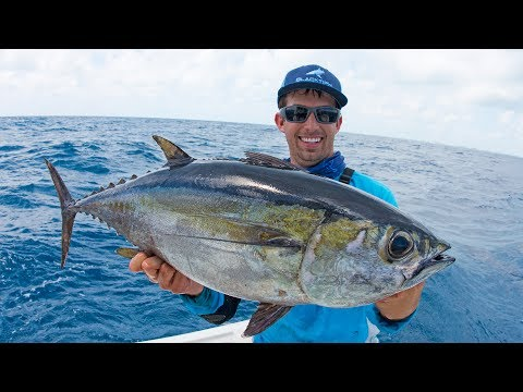 Fishing for Dinner Fish in Miami - 4K