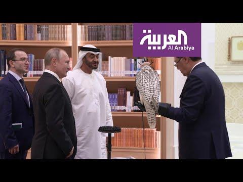 شاهد.. هدية محمد بن زايد لـ بوتين  - نشر قبل 25 دقيقة