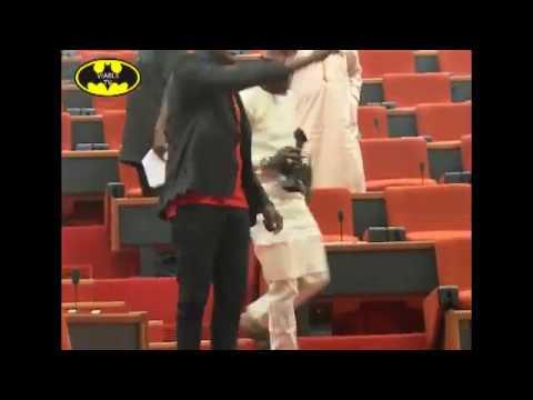 Pandemonium At Senate As Thugs Steal Mace