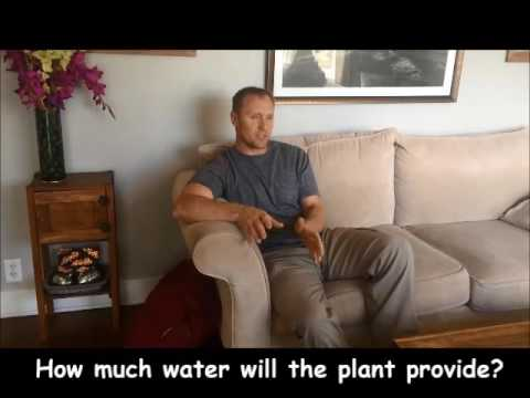 Santa Barbara desalination plant case study