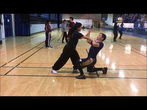 Davis Wushu - Training to Performance