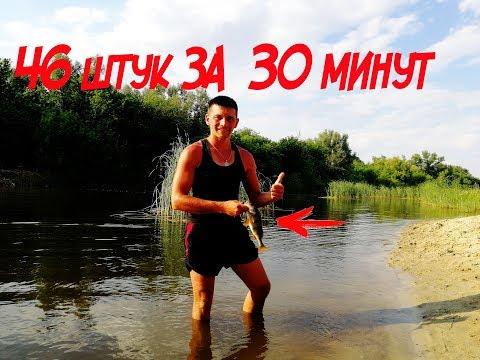 ЭТА ПРИМАНКА убивает ОКУНЯ  Ловля окуня летом Рыбалка 2018