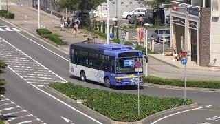 つくば市研究学園駅 コミュニティバス『つくバス』 大きいのも小さいのもドンドンくるYO!