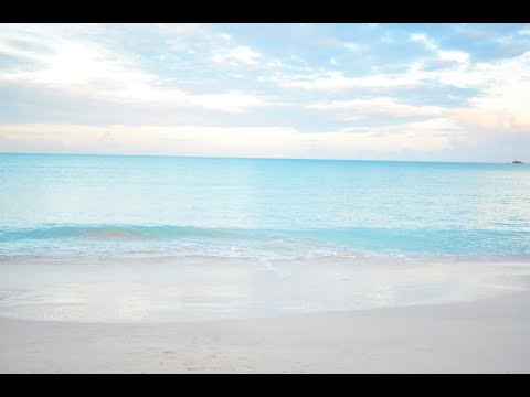 Starfish Jolly Beach Resort, Antigua Vacation, Sting Ray City