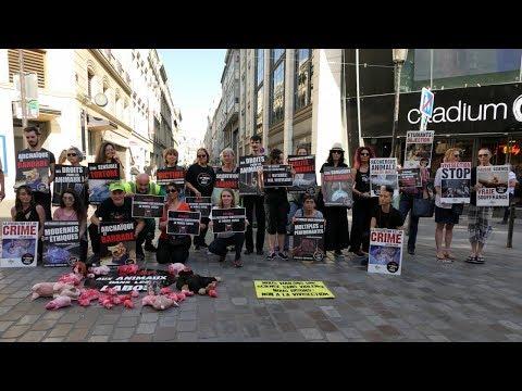Stop aux Animaux dans les Labos - Paris avril 2018