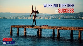 RedBlue Guide - Working Together is SUCCESS
