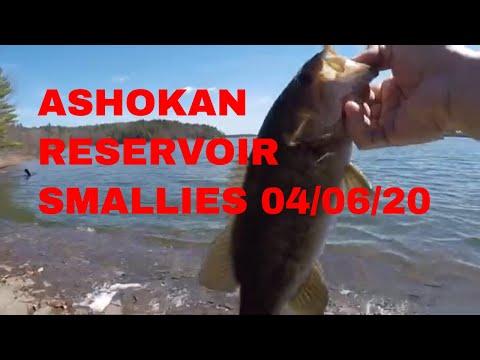 ASHOKAN RESERVOIR SMALLMOUTH BASS 04/06/20