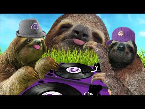 Dancing sloth party! WATCH funny sloth videos:...  