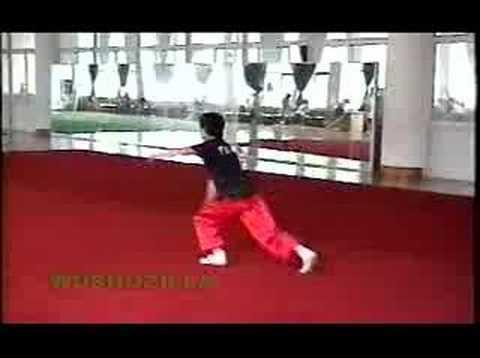 Nanquan (2000 Training @ Guangdong)