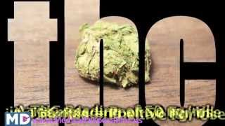Marijuana THC Secondhand Smoking | How Long Weed Stay in Your System