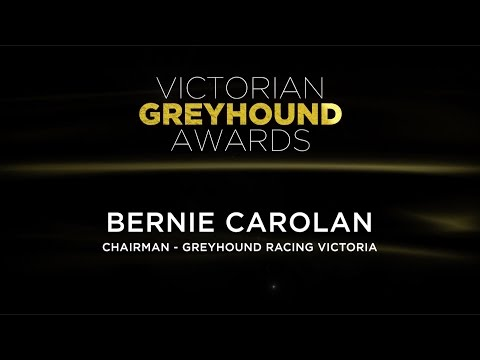 2015/16 Victorian Greyhound Awards: Bernie Carolan