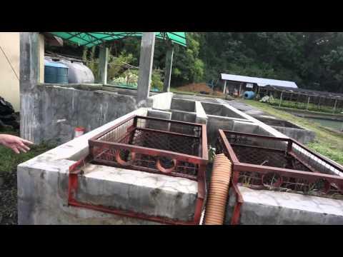 San Fernando La Union - FSM Case Study