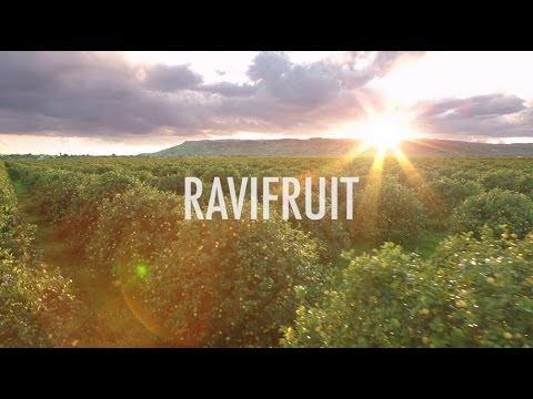 RAVIFRUIT - L'excellence du fruit / The excellence of fruit