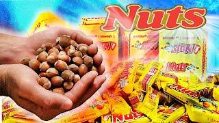 СКОЛЬКО ОРЕХОВ в 100 БАТОНЧИКАХ Nuts
