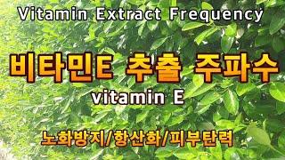 비타민E 추출 주파수 ㅣ항산화 ㅣ백내장 예방ㅣ심혈관 질…
