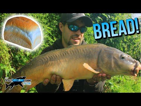 Epic Fishing With BREAD! | TAFishing