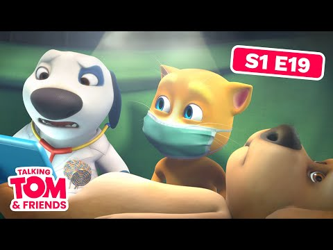 Talking Tom And Friends - Doc Hank (Season 1 Episode 19)