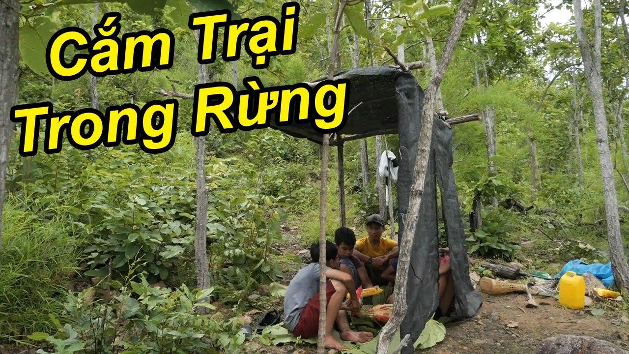 Làm Lều Cắm Trại Trong Rừng Đầy Thú Vị | TQ97