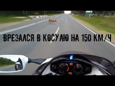 Врезался в косулю на 150 км/ч    ДТП на SUZUKI GSXR 1300 Hayabusa