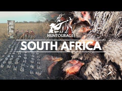 Amazing Bird Hunting Safari In South Africa (4k Video) -  صيد الطيور البرية في جنوب أفريقيا