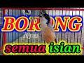 Edan Cendet Ini Borong Semua Isian Cendet Gacor Full Isian  Mp3 - Mp4 Download