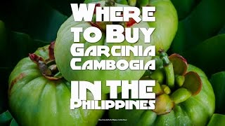 Where to Buy Garcinia Cambogia in the Philippines