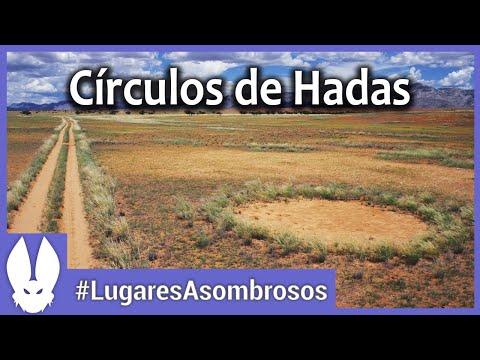revelan el secreto de los misteriosos circulos de hadas del desierto de namibia