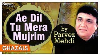 Ae Dil Tu Mera Mujrim   Parvez Mehdi   Popular Pakistani Ghazals   Nupur Audio