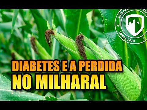 YouTube, Diabetes e a mulher perdida no milharal?  #Live28