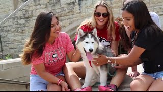 NIU Alpha Phi Recruitment Video 2016