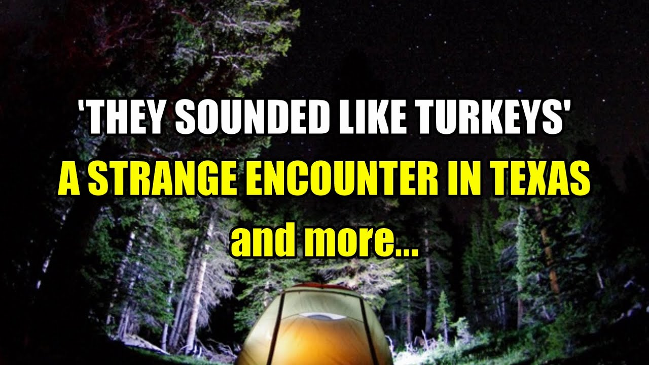 """""""They Sounded Like Turkeys, An Encounter in Texas and more""""   Paranormal Stories"""