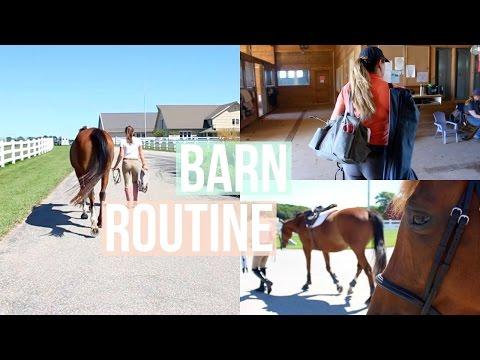 Barn Routine + Raws | Equestrian Prep