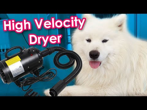 Samoyed High Velocity Dryer Tutorial