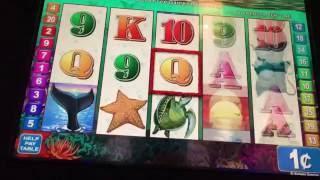 Oceans Wild Slot Machine ~ FREE SPIN BONUS ~ STICKY WILDS!!