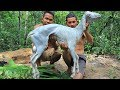 Amazing Cooking Goat Recipe In Forest To Survival