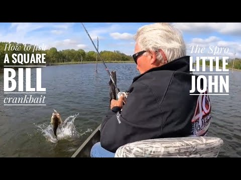 """Roland's best , a """"How To"""" YouTube, on square bill crankbaits! The Spro Little John!"""