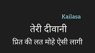 Teri Deewani Diwani Lyrics हिंदी teri deevani divani Floating Hindi Lyrics by PK